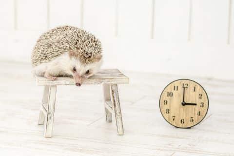 時間を奪われる